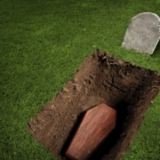 journey through the grave