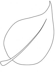 Step 4: Make a leaf or fruit-shaped template