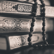 Qur'an and the Arabic language – Shaykh Ali Hani