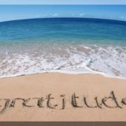 Radical Gratitude Series