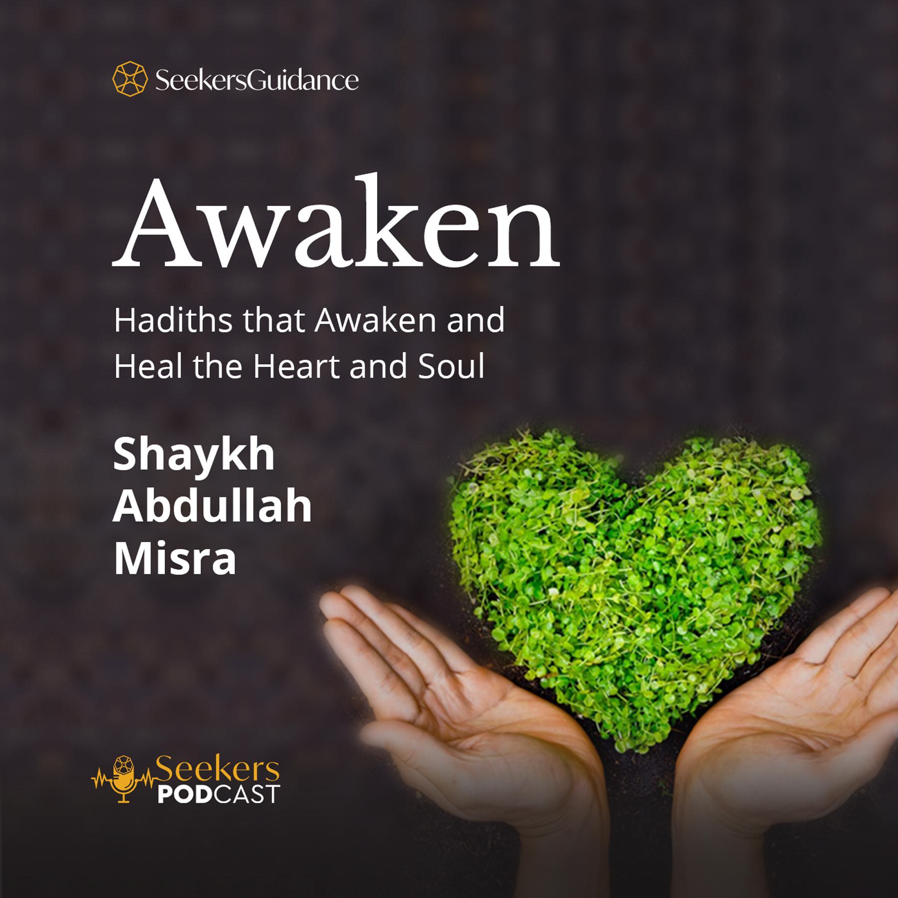Awaken! : Hadiths to Awaken and Heal the Heart and Soul
